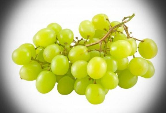 انگور سفید تازه، یک آنتی اکسیدان قوی