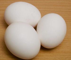 تخم مرغ غذای مغز