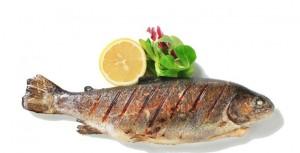 ماهی غذای مغز