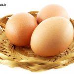 از خواص  تخم مرغ و ارزش تغذیه ای آن چه می دانید؟