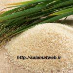 آشنایی با خواص شفابخش سبوس برنج