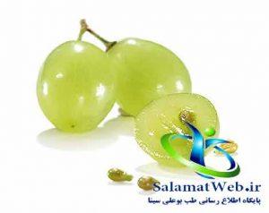 روغن هسته انگور و کاهش کلسترول خون
