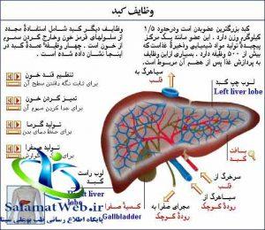 سرطان کبد چیست؟