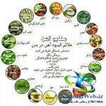درمان کم خونی با مواد غذایی حاوی آهن