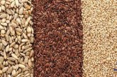سلامتی شما در گرو مصرف دانه های بسیار کوچک