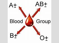 نقش تغذیه گروه های خونی در سلامتیشان