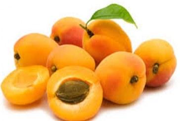 با اثرات درمانی زردآلو این میوه خوشمزه آشنا شوید