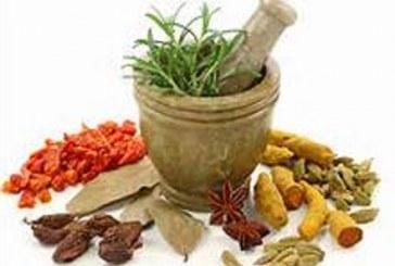 آشنایی با خواص برخی از گیاهان دارویی در طب سنتی