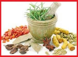 عرقیات گیاهی در طب نتی چه خواصی دارند؟