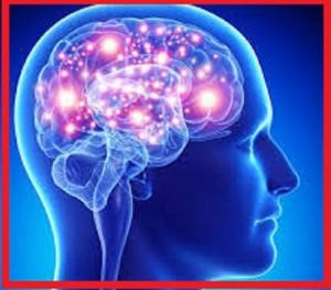 راه های تقویت مغز
