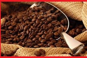 از خواص قهوه چه می دانید؟
