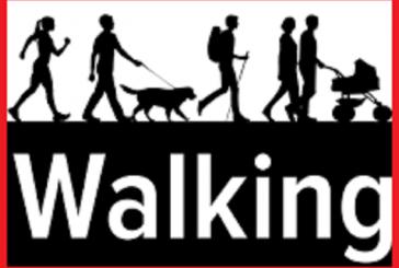 پیاده روی چه نقشی در رسیدن به تناسب اندام و سلامت شما دارد؟