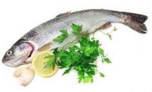 ماهی سالمون و داشتن قلب سالم