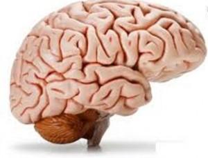 چه کارهایی سلامتی مغز را تهدید می کند؟