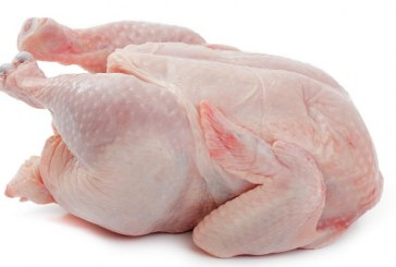 از خواص پروتئین سفیدی به نام گوشت مرغ  چه می دانید؟