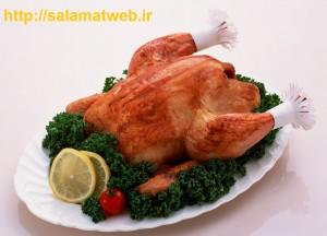 گوشت مرغ سرشار از سروتونین