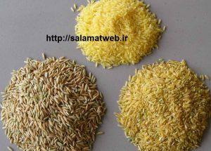 برنج قهوه ای و پیشگیری از دیابت