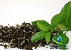 چای سبز و جوانسازی پوست