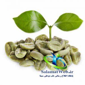 چربی سوزی با ثهوه سبز