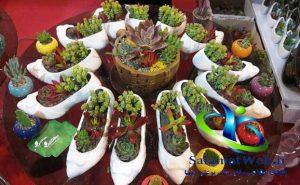 محل برگزاری نمایشگاه گل و گیاه