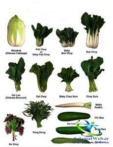 سبزیجات برگ سبز و افزایش متابولیسم بدن