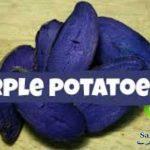 سیب زمینی بنفش چیست + خواص سیب زمینی بنفش