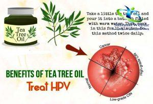 مزایای درخت چای