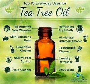 قیمت روغن درخت چای
