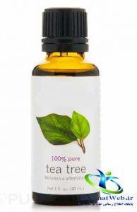 روغن درخت چای را از کجا تهیه کنیم؟