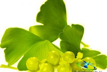 خواص گیاه جینکو (چهل سکه)+عوارض گیاه جینکو