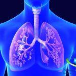 سلامت ریه ها با استفاده از یک رژیم غذایی سالم