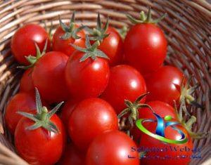ماسک گوجه فرنگی برای پوست خشک