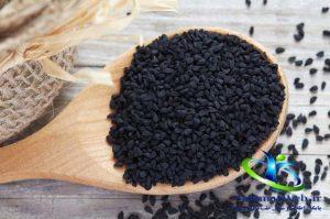 طرز تهیه روغن سیاه دانه