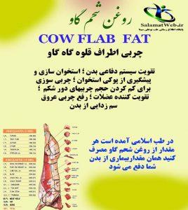 خرید روغن شحم گاو