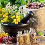 داروهای گیاهی و کاربرد آن در درمان برخی بیماری ها