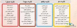 اخلاط چهارگانه طب سنتی