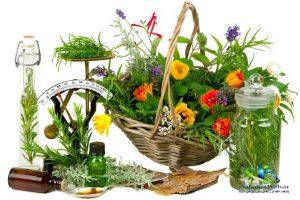 خواص بارهنگ در طب سنتی