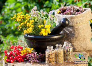درمان گیاهی بی اختیاری ادرار در مردان