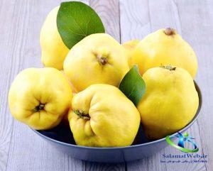 فصل میوه به چه زمانی است