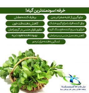 سبزی خرفه و دیابت