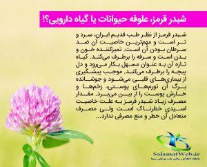 خواص درمانی گیاه شبدر