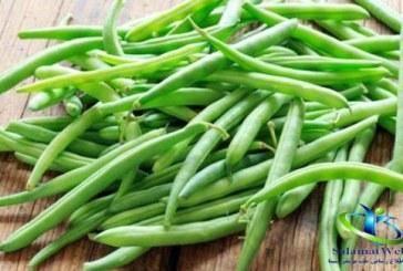لوبیا سبز رمز تندرستی و تناسب اندام