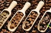 دانه قهوه و خواص آن +طرز انتخاب بهترین قهوه