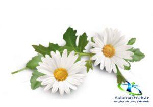 درمان التهاب بدن در طب سنتی