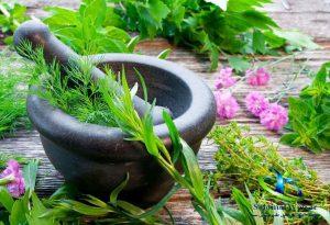 درمان نارسایی کبد با داروی گیاهی