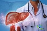 نارسایی کبد چیست؟+آیا نارسایی کبد قابل درمان است؟