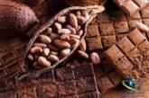 با کاکائو بیماری ها را به زانو دربیاورید