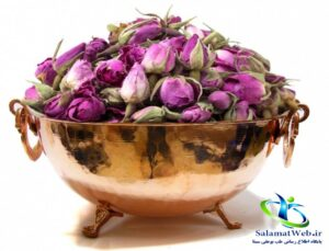 خواص درمانی گل محمدی در طب سنتی