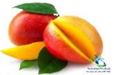 میوه انبه و فوائد بی نظیر آن برای سلامتی+مصارف انبه
