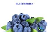 میوه بلوبری و خواص جادویی آن برای سلامتی
